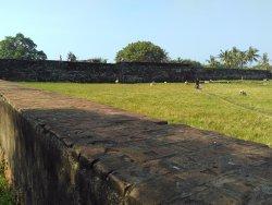 situs benteng yang dijadikan tempat pengembalaan kambing