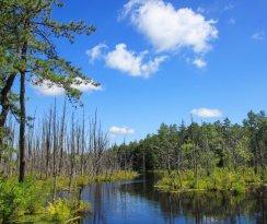New Jersey Pinelands National Reserve