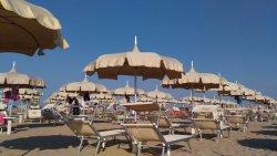 Beach Bulli 75