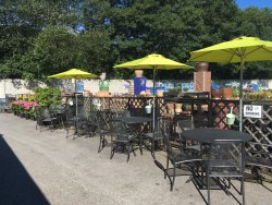 Willow Tree Cafe-Halifax