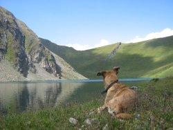 Lago di Liconi