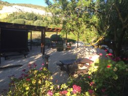 Gentilini Winery & Vineyards
