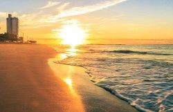 Beverly Hills Beach