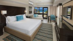 Deluxe Oceanview Room (201346772)