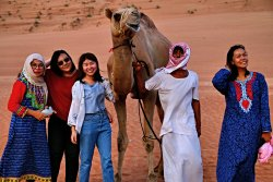 Bediyah Safari Tours