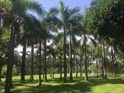 珠海海滨公园