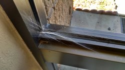 Spider web in corner of entry