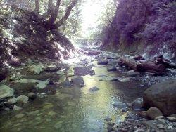 Svirsk Gorge