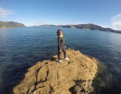 Shelly Bay