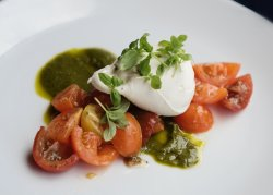 Burrata | Summer 2016 Menu