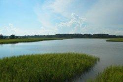 Russell Burgess Coastal Preserve
