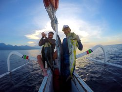Indonesia Spearfishing Charter