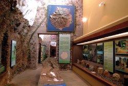 Museo de Guayadeque