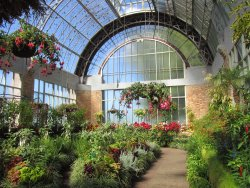 Winter Garden Auckland Domain