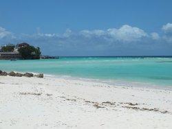 Coast Beach Club