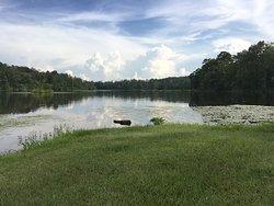 Payne Lake Recreation Area