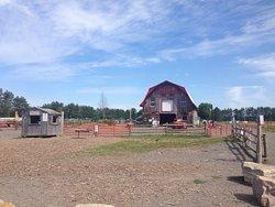 Quinn Farm