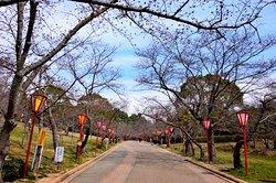 Hiokayama Park