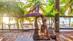The Treehouse Yoga