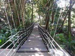 Kula Wild Adventure Park