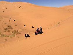 Sahara Buggies