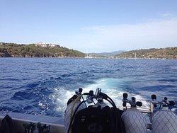 Submaldive Elba Diving