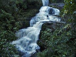 McLean Falls Walk