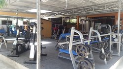 Golden Lion Gym