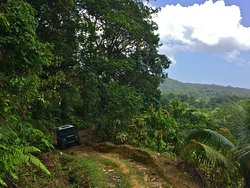 Trinidad & Tobago Sightseeing Tours