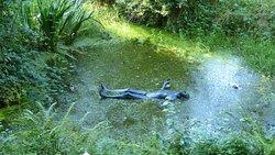 Broomhill Sculpture Garden