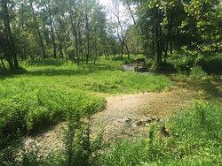 Parco del Piave