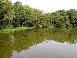 Hugh McRae Park