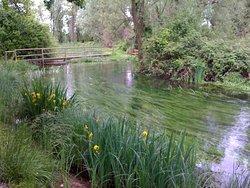 Parco delle Risorgive
