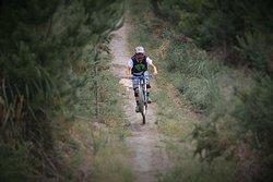 Parahaki Mountain Bike Park