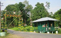 Jayanti Forest