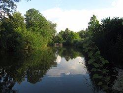 Wertwiesenpark