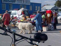 Stittsville's Carp Road Flea Market
