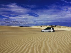 Australian Coastal Safaris