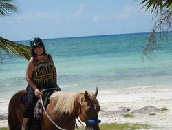 Grand Bahama Tour - Day Tours