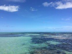 Piscinas Naturais Paripueira - Alagoas