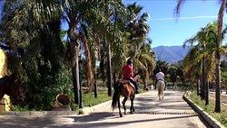 Rancho Acebuchal