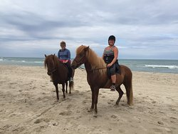 Saga Heste