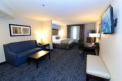 BEST WESTERN Flint Airport Inn & Suites