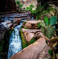 Thunder River Trail