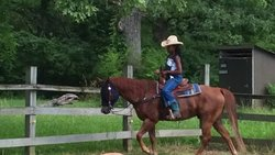 Kankakee State Park Riding Stables