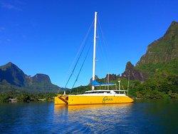 Brasil Sail Charter