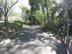 Jardin Botanico de Cupaynicu