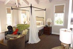Not a Luxury Hotel--Lousy Service