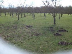 Beverley Parks Nature Reserve