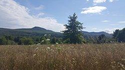 Mt. Pollux